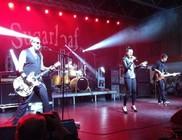 Gubik Petra a Sugarloaf új énekesnője