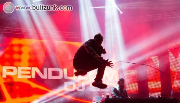 SZIN 2014: Pendulum