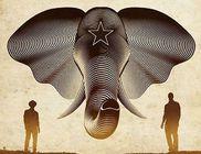 Nico & Vinz: Black Star Elephant